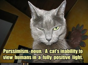 Purssimism.  noun.   A  cat's inability to view  humans in  a  fully  positive  light.