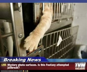 Breaking News - Mystery photo surfaces. Is this Foofany attempted jailbreak?
