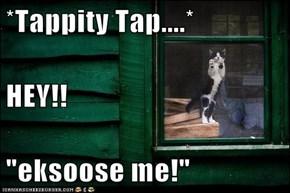 "*Tappity Tap....* HEY!! ""eksoose me!"""