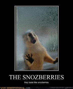 THE SNOZBERRIES