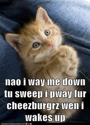 nao i way me down tu sweep i pway fur cheezburgrz wen i wakes up