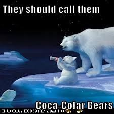 They should call them  Coca-Colar Bears