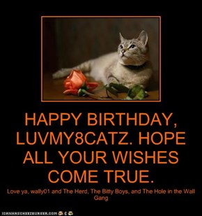 HAPPY BIRTHDAY, LUVMY8CATZ. HOPE ALL YOUR WISHES COME TRUE.