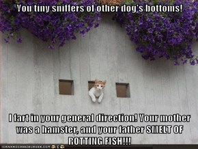 You tiny sniffers of other dog's bottoms!  I fart in your general direction! Your mother was a hamster, and your father SMELT OF ROTTING FISH!!!