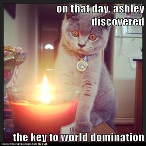 on that day, ashley discovered  the key to world domination