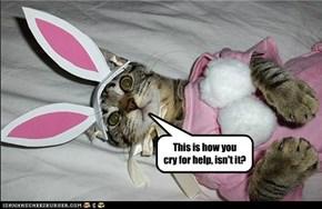 Easter Basket Case
