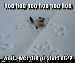 hop hop hop hop hop hop  wait.. wer did ai start at??
