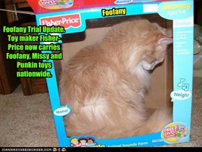 Foofany Trial Update. KCAT Reports. You Decide. Foofany, Missy and Punkin toys are a big hit across the country!