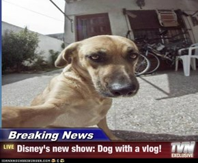 Breaking News - Disney's new show: Dog with a vlog!