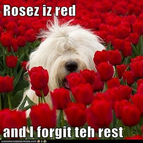 Rosez iz red  and I forgit teh rest