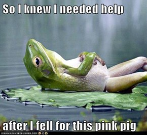 So I knew I needed help  after I fell for this pink pig