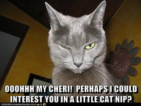 OOOHHH MY CHERI!  PERHAPS I COULD INTEREST YOU IN A LITTLE CAT NIP?