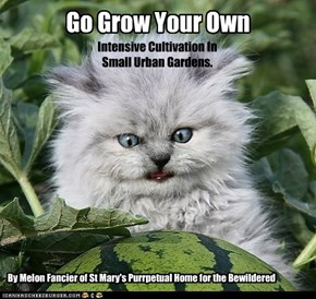 Go Grow Your Own