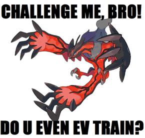 CHALLENGE ME, BRO!