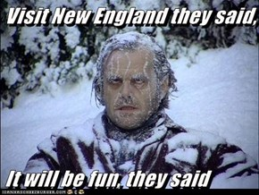 Visit New England they said,   It will be fun, they said