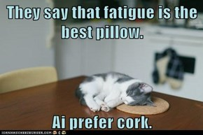 They say that fatigue is the best pillow.  Ai prefer cork.