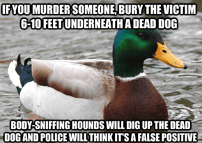 Just Don't Shoot the Dog First