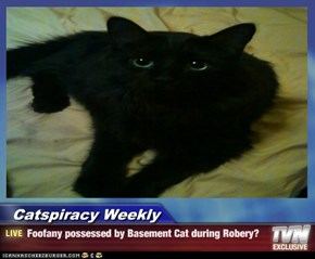 Catspiracy Weekly - Foofany possessed by Basement Cat during Robery?