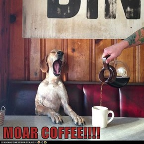 MOAR COFFEE!!!!