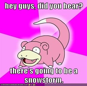 hey guys, did you hear?  there's going to be a snowstorm.