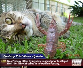 Foofany Trial News Update - Was Foofany bitten by mystery bug just prior to alleged theft? Dr. Tiny Cat called in to examine Foofany.