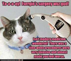 Ya-a-a-ay!  Furrgie's surgery wuz gud!