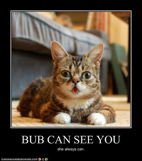 BUB CAN SEE YOU