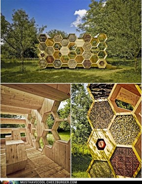 A Nice Shelter for both Bees and Humans
