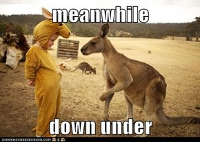 meanwhile   down under