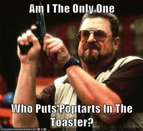 Am I The Only One  Who Puts Poptarts In The Toaster?