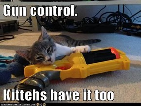 Gun control.  Kittehs have it too