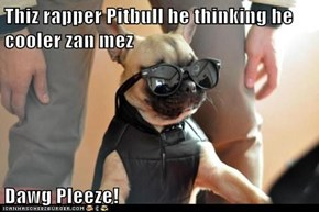 Thiz rapper Pitbull he thinking he cooler zan mez  Dawg Pleeze!