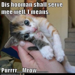 Dis Hooman Shall Serve Mee Well