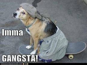 Imma GANGSTA!