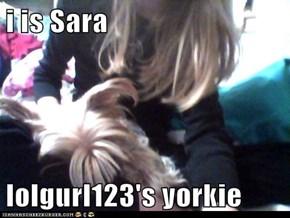 i is Sara  lolgurl123's yorkie