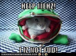 HELP MEHZ!  I IZ NOT FUD!