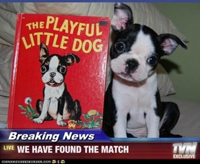 Breaking News - WE HAVE FOUND THE MATCH