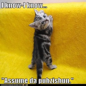 "I know-I know...  ""Assume da puhzishun."""