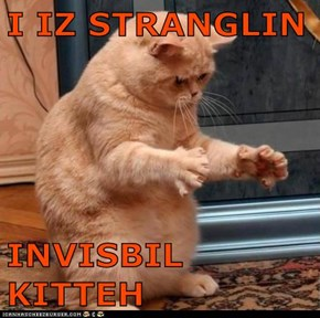 I IZ STRANGLIN  INVISBIL KITTEH