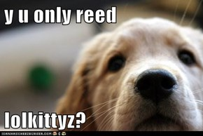 y u only reed  lolkittyz?