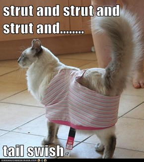 Strut and Strut and Strut and Strut and...Tail Swish