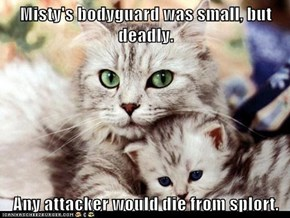 Misty's bodyguard was small, but deadly.  Any attacker would die from splort.