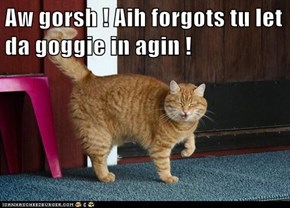 Aw gorsh ! Aih forgots tu let da goggie in agin !