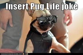 Insert Pug Life joke