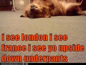 i see london i see france i see yo upside down underpants