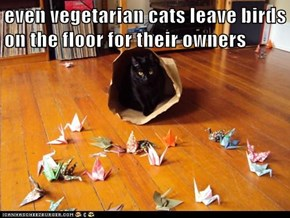 even vegetarian cats leave birds on the floor for their owners