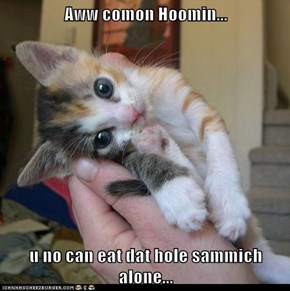 Aww comon Hoomin...  u no can eat dat hole sammich alone...
