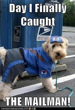 Day I Finally Caught  THE MAILMAN!