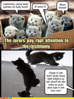 Foofany Trial Jury Box