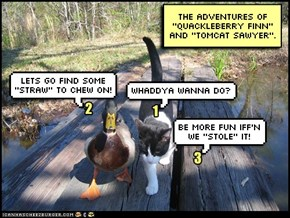 TOMCAT SAWYER and QUACKLEBERRY FINN.